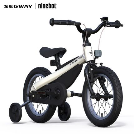 Segway Kids Bike